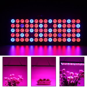 Grow Light 1000w for plant growing grow house greenhouse